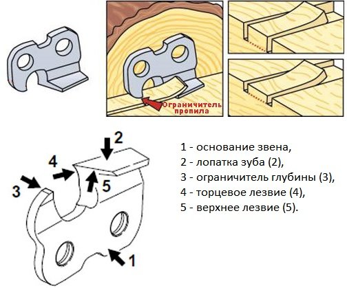 Как заточить цепь бензопилы своими руками